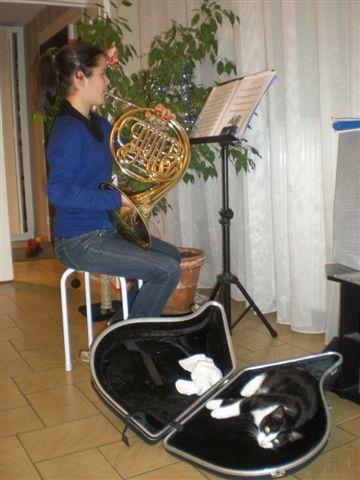 Icare se plait beaucoup dans sa nouvelle famille, et on s'est aperçu qu'il aimait la musique!